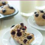 Banana Blueberry Spelt Muffins – THM-E